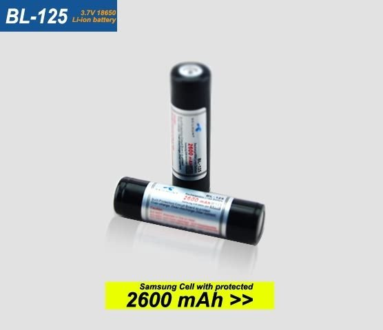 BL-125 Battery Show 2