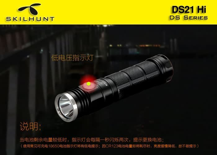 DS21 HI Flashlight Specis 3